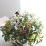グランドサイズ・アレンジメント お誕生日 春 ¥25,000-